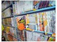 http://mangavest.ru/wp-content/uploads/2010/11/MangaSeminar-Slides-011.jpg